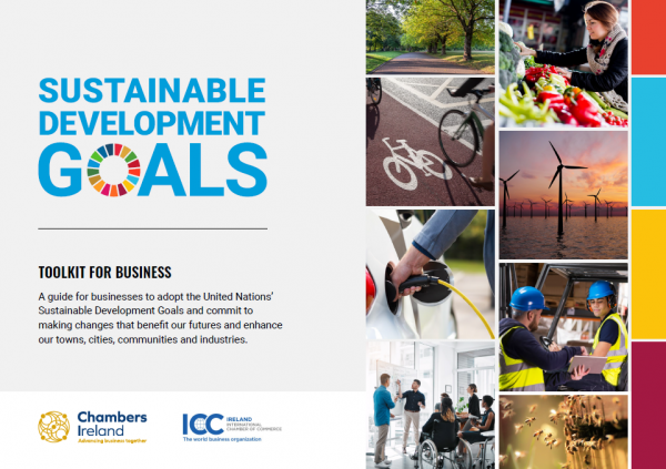 Image of the Sustainable Development Goals Toolkit Brochure